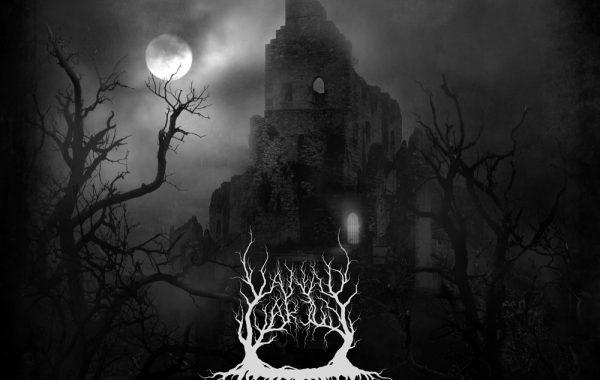 """VANAD VARJUD – """"Dismal Grandeur In Nocturnal Aura"""""""