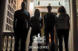 "Rick Palmer (SUMA) on Rock Overdose: ""We'll be doing a European tour this fall"""