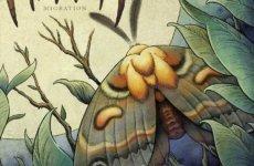 "PINEWALKER – ""Migration"" (English)"