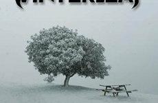 """WINTERLEAF – """"Leaves Of Winter"""""""